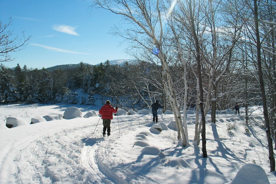 Cross-Country Skiing in National Parks